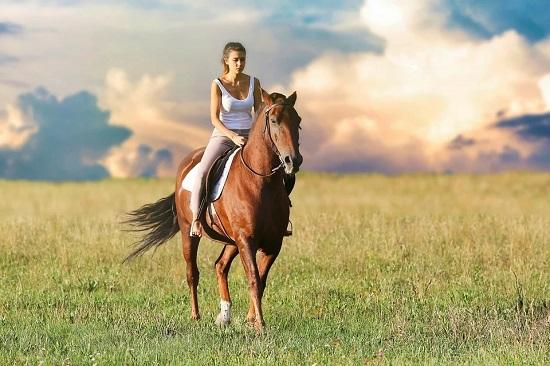 caballo libra