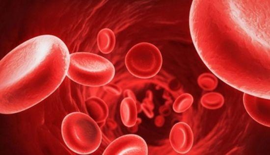 Oxigeno en la sangre