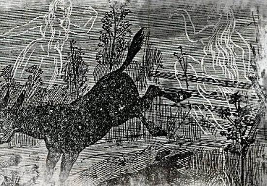 leyenda de la granja bell, animal