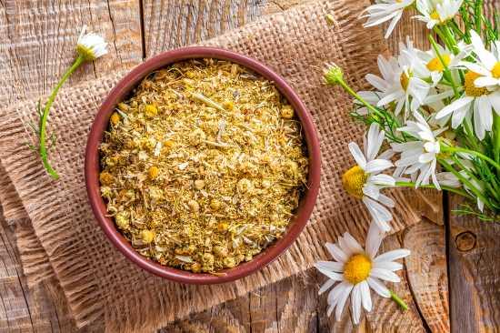 manzanilla-flores_secas