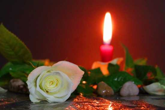 ritual de amor con rosa