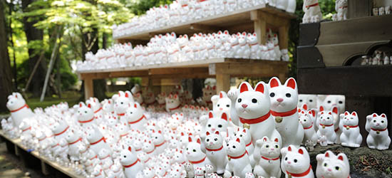 templo-gotokuji-exposición