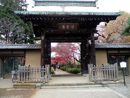 templo maneki neko entrada