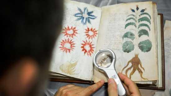 teorias manuscrito Wilfrid Voynich