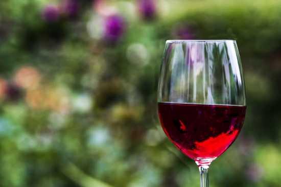 vino tinto bebida sana